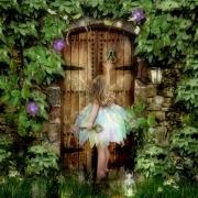 Angel Door